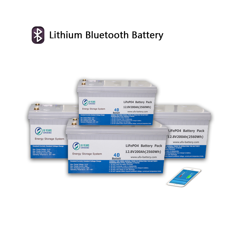 Latest lifepo4 lithium ion battery 100ah company for solar system Gel battery replacement-2
